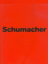 Michael Schumacher #2# Die offizielle und autorisierte Inside-Story zum Karriere-Ende